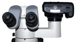 Canon EOS DSLR camera with CA-NI-SMZ adapter on Nikon SMZ 1500 stereomicroscope
