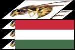 Deep Focus Magyar language pack