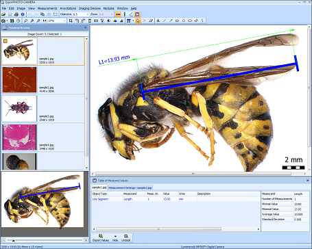 QuickPHOTO CAMERA Microscope Software Screenshot