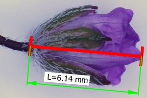 QuickPHOTO MICRO dimensions