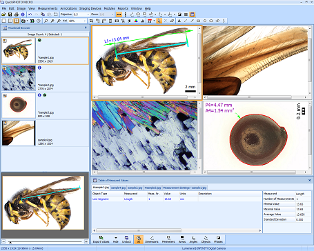 QuickPHOTO MICRO Microscope Software Screenshot
