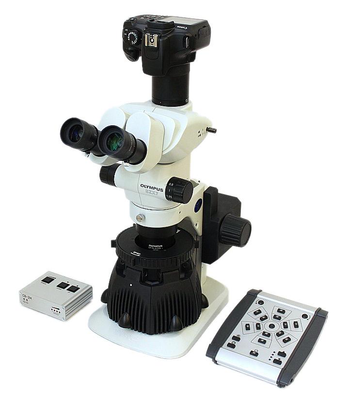 SUNFLOWER LED illuminator on Olympus SZX7 microscope with Canon DSLR camera